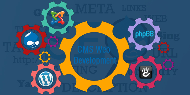SEO friendly CMS Development to obtain higher page rank in Search Engines
