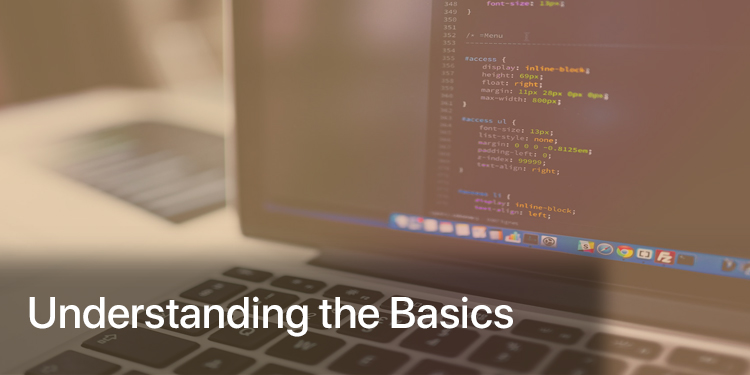 Understanding the Basics of a Professional Web Development Company