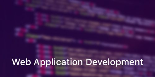 Why does web application development requires expertise?