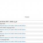 Language pack on Sharepoint Server